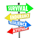 No less than 88% of CEOs questioned as part of a new survey are prioritising investment in resilience to ensure their business' long-term survival