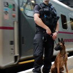Trained police dogs are often used to combat crime on the rail network